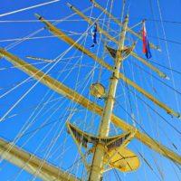 Group Cruise
